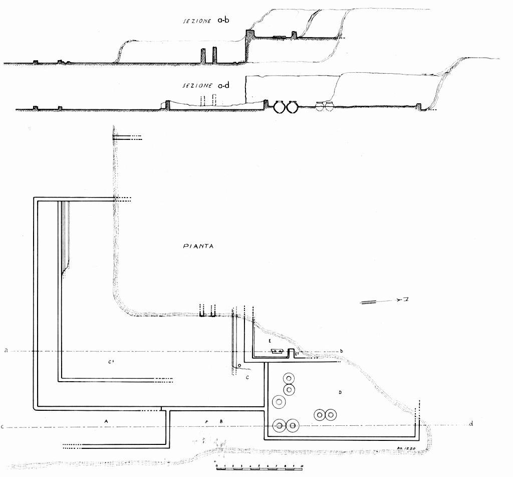 Pianta e sezioni dell'area di scavo